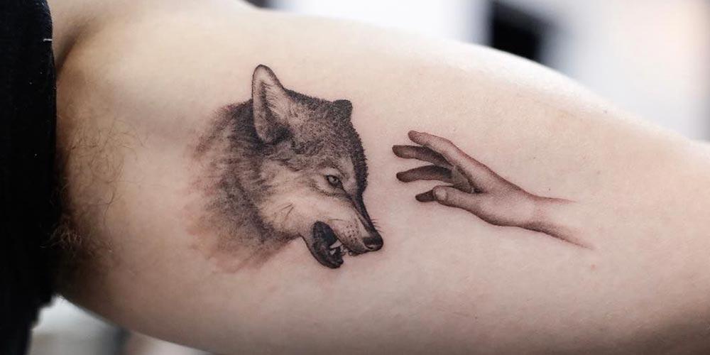 تاتو گرگ روی دست