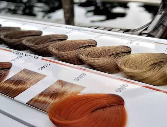 آموزش خواندن کاتالوگ رنگ مو در آموزشگاه آرایشگری رز سرخ